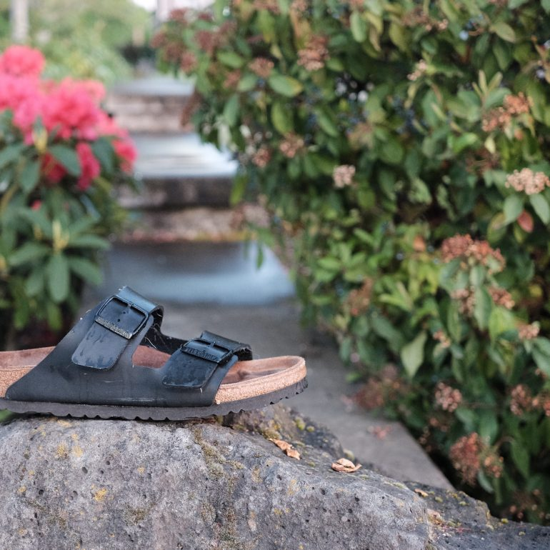 Lone Sandal at Broadway Commons in Salem Oregon by Pelletier Photos